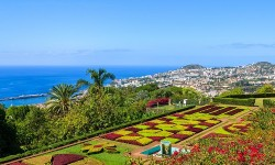 Madeira_Articles
