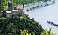 Rhine_Articles