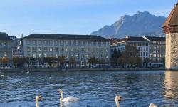 טיול מאורגן לצפון איטליה ושווייץ