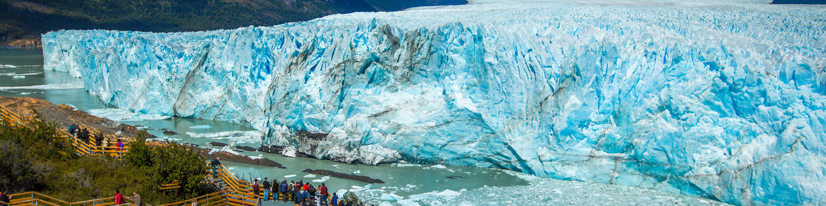 South_America_Calafate_Header