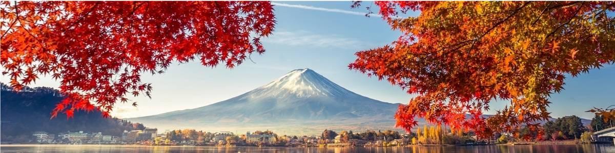 יפן בתקופת השלכת